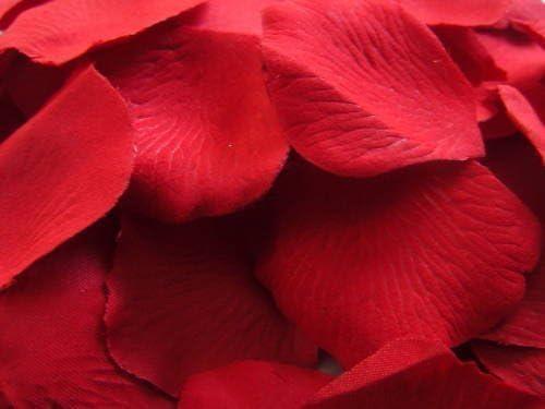 Bilder Rahmen Blätter Handarbeit 34x27 cm Bali