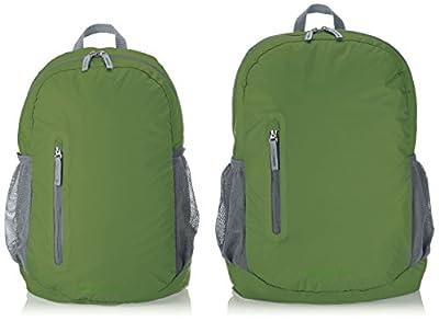 AmazonBasics Ultralight Packable Day Pack