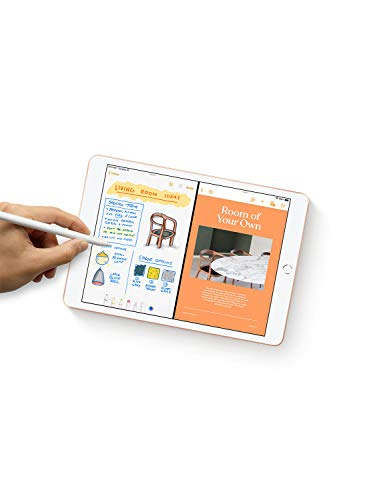 Apple iPad (10.2-inch, Wi-Fi, 128GB) - Space Gray (Latest Model)