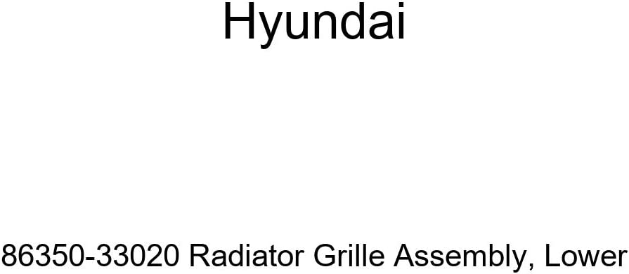 Lower Genuine Hyundai 86350-33020 Radiator Grille Assembly