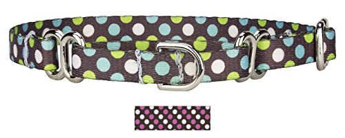 Country Brook Design | 3/8 Inch Barrington Dots Martingale Dog Collar - Micro