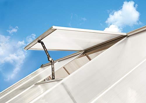 Palram HG1013 Mythos/Hybrid Greenhouse Vent Kit, One Size, Silver