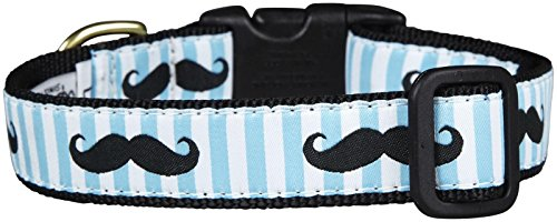 - Up Country Mustache Dog Collar - Medium