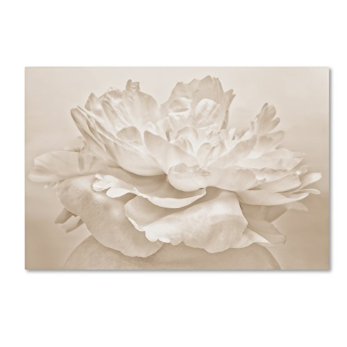 White Peony by Cora Niele, 22x32-Inch Canvas Wall Art