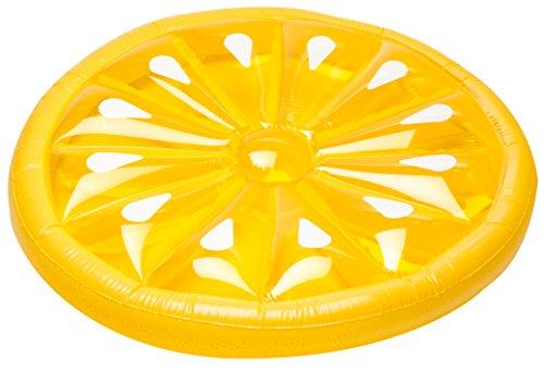 SUN Searcher Aqua-Cliner Lazy Lounger