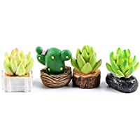 Chris.W Set of 4 Lovely Cactus Dollhouse Miniature Succulent Plants Figurines Fairy Garden Terrarium Supplies Ornaments…