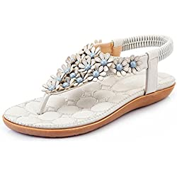 Foresightrade@ Women Summer Bohemia Flower Flip-flop Sandals Flat Shoes Soft (US8.5/EUR42, Grey)