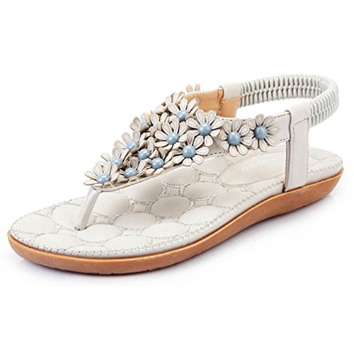 Foresightrade@ Women Summer Bohemia Flower Flip-flop Sandals Flat Shoes Soft (US7.5/EUR40, Grey) (Flower Flip Flop Sandals)