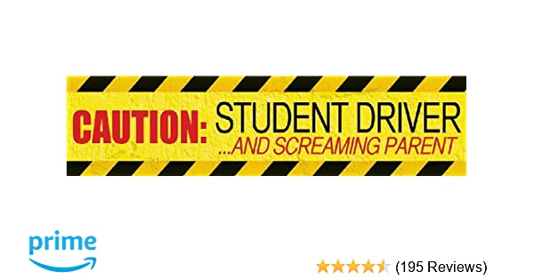 """12/"""" Vinyl Magnetic Vehicle Sign Drivers Graphics Student Driver Magnets PAIR"""