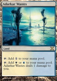 Magic: the Gathering - Adarkar Wastes (347/383) - Tenth Edition - Foil
