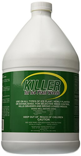 Killer 100047322 Pest and Disease Control for Ice Plant/Weeds, 1 gallon