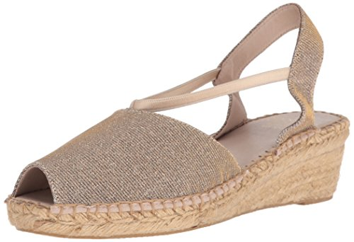 André Assous Womens Prydlig-aa Espadrille Wedge Sandal Champagne Gnistan