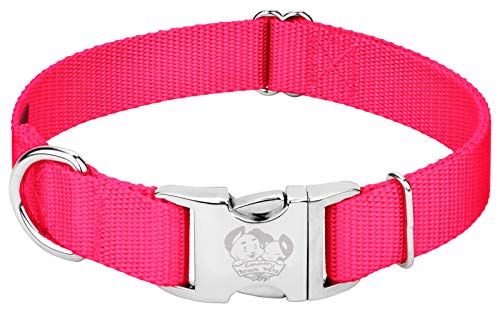 Country Brook Petz - Premium Nylon Dog Collar with Metal Buckle - Vibrant 25 Color Selection