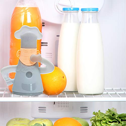 D-Mail - Absorbeolores para frigorífico Mister Chef: Amazon.es: Hogar
