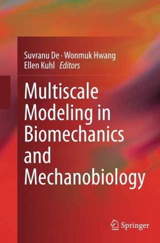 Image for publication on Multiscale Modeling in Biomechanics and Mechanobiology