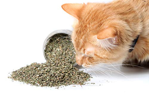 Cat Dope Catnip, Maximum Safe Blend for Cats, Infused with High Premium Potency Your Kitty is Guaranteed to Go Crazy for! (10 Cups)