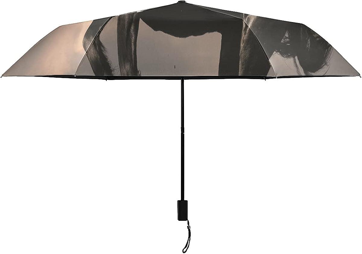 Paraguas invertido para mujer Caballo semental frisón negro en la puesta del sol Paraguas de viaje Niños Portátil Ligero A prueba de viento Paraguas invertido Hombres Sol Lluvia perfecto Pa