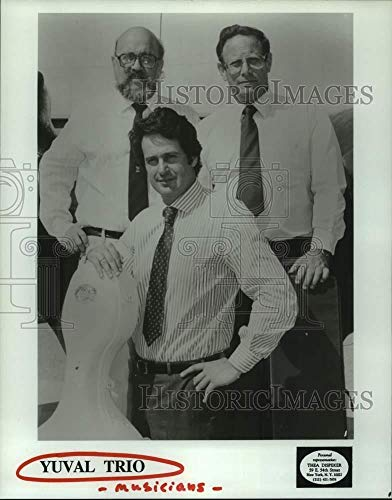 1993 Press Photo The Yuval Trio - musicians - hcp10612