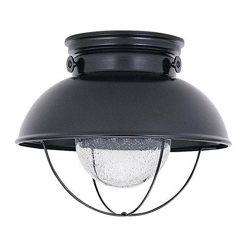 Sea Gull Lighting 886991S-12 LED Sebring Outdoor Ceiing Flush Mount in Black Finish with Clear Seeded Glass, Black