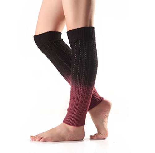 Leg Acrylic Warmers (Nanxson(TM) Women's Knit Acrylic Gradient Color Long Leg Warmer TTW0038 (black))