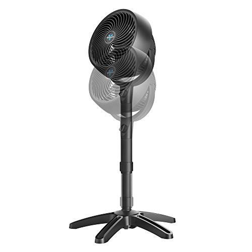 3 Speed Fan