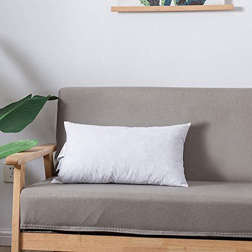 12x24 lumbar pillow insert - 8