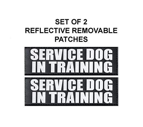 Doggie Stylz Set of 2 Reflective Service Dog in Training Patches for Service Dog Harnesses & Vests. (Medium 4 X 1.5)