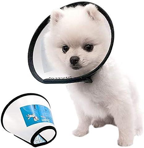 como recobrarse heridas linear unit perros