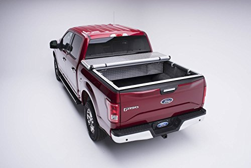 Box Vinyl Extang Tool (Extang 32410 Classic Platinum Toolbox Snap Tonneau Cover - fits F150 (6 1/2 ft bed) 09-14)