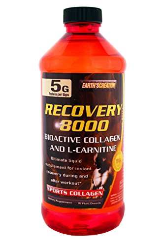 Recovery 8000 with Collagen and L-Carnitine by Earth's Creation