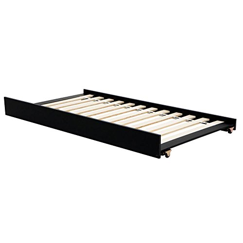 LightHeaded Beds 20233 Trundle Bed, Twin, Satin Black (Double Twin With Trundle Bed)