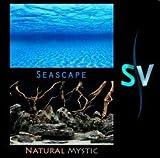 Seaview AVWBGSS118 Seaview Seascape/Natural Mystic Aquarium Background, 18-Inch offers