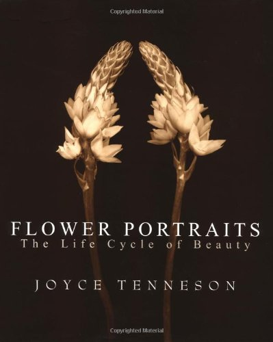 Flower Portraits: The Life Cycle of Beauty