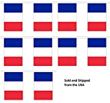 10%27 France String Flag Party Bunting H