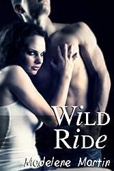 Wild Ride (Stranger Sex, Exhibitionist/Voyeur)