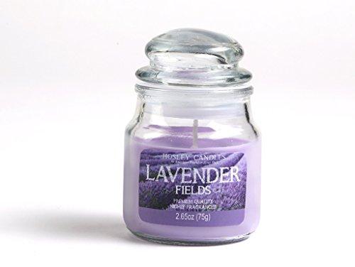 Hosley Lavender Fields Highly Fragranced, 2.65 Oz wax, Jar Candle