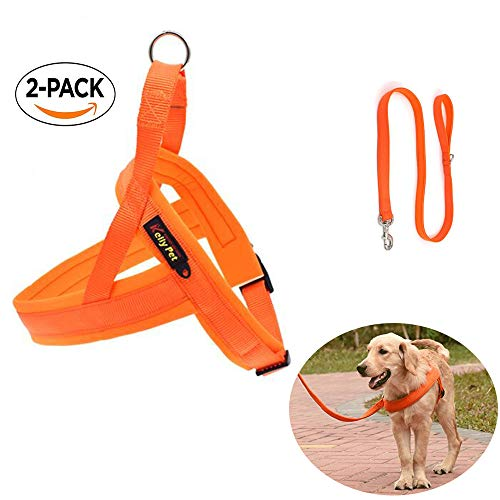 Orange No Pull Comfortable Dog Harness and Leash For Big Dogs - Water Proof and Fast Drying -Great for training in rain or go swimming