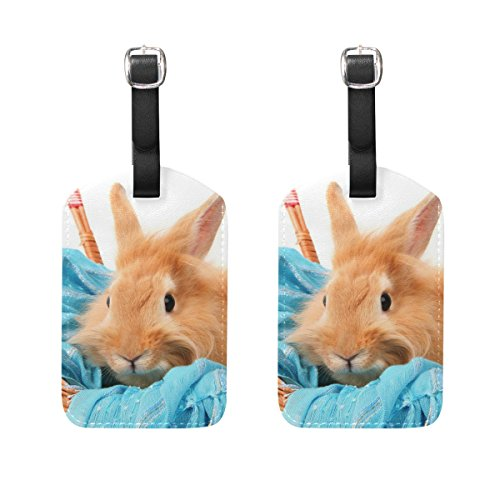 (Luggage Tag for Baggage Suitcase 2 PCS Bunny Rabbit In Basket With Blue Scarf Leather Travel Bag Address Labels)