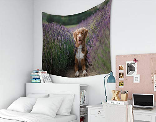 Jacrane Tapestry Wall Hanging, Tapestries with 60x50 Inches Dog in Lavender Flowers Lovely pet Nova Scotia Duck Tolling Retriever Toller Art Tapestry for Dorm Bedroom Living Home ()