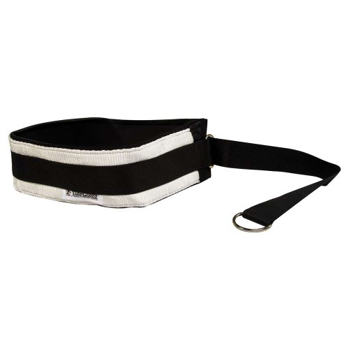 Power Systems Pro Waist Belt Cinch Strap with D-Ring, Accessory for Bungee Cords, Fits Waists Up to 44 Inches, Black/White (21572) (Cinch Strap Waist)