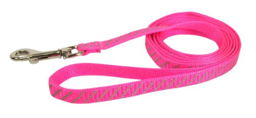 Hamilton Reflective Snag Proof Braided Cat Lead, 3/8-Inch by 4-Feet, Hot Pink (Collar Hamilton Braided Cat)