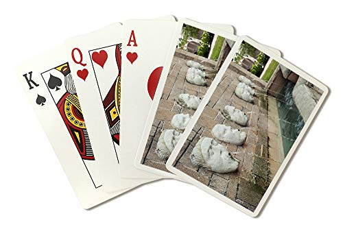 St. Augustine, Florida - Fuente de los Canos de San Francisco - Photography A-92669 (Playing Card Deck - 52 Card Poker Size with Jokers)