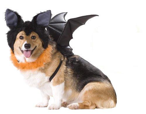 Animal Planet Bat Dog Costume, Small -
