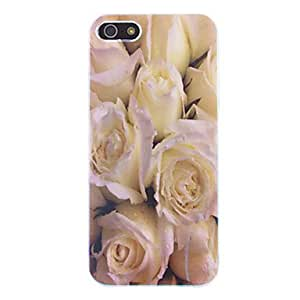 DD White Rose Pattern Protective Hard Case for iPhone 5/5S