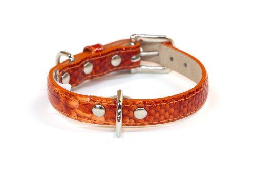 - Bluemax Genuine Leather Patent Snake Dog Collar, 5/8-Inch by 10-Inch, Orange
