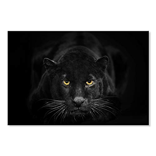 - SEVEN WALL ARTS -Black White Canvas Wall Art Animal Leopard Wall Pictures Giclee Print on Canvas Stretched Living Room Bedroom Ready to Hang 24 x 36 Inch