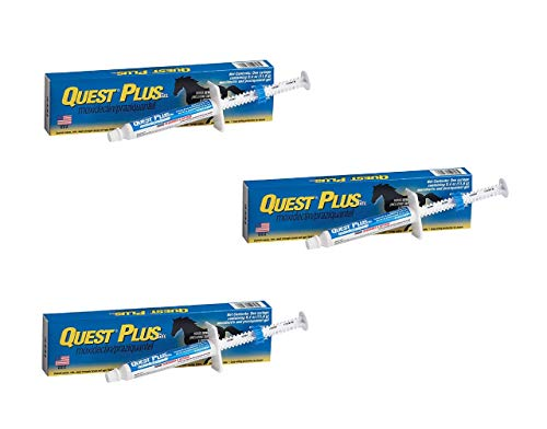 Pfizer Zoetis Animal Health Quest Plus Gel Equine Dewormer (3 Pack), Blue