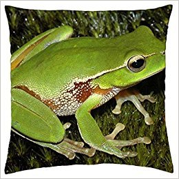 Froggy Pillow - Doormat bikini GREEN FROGGY - Throw Pillow Cover Case (18
