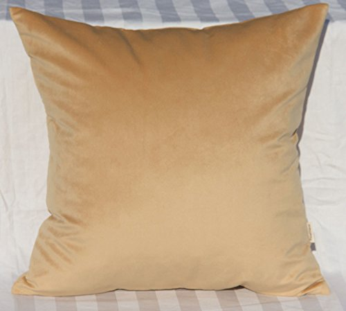 Throw Cushion - 1