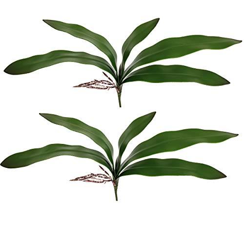 Cymbidium Leaf - Htmeing 2pcs Artificial Cymbidium Orchids Leaves Plant Branches Stems for Wedding Centerpieces Floral Arrangement (Leaves)
